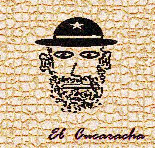 20130228093839-cacaracha-os-monegros.jpg